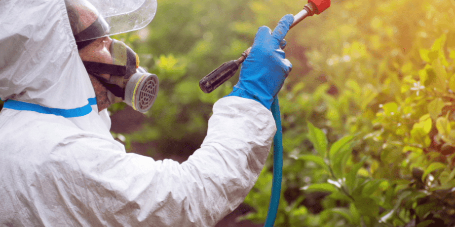 Things to Consider while Buying Weed Killers