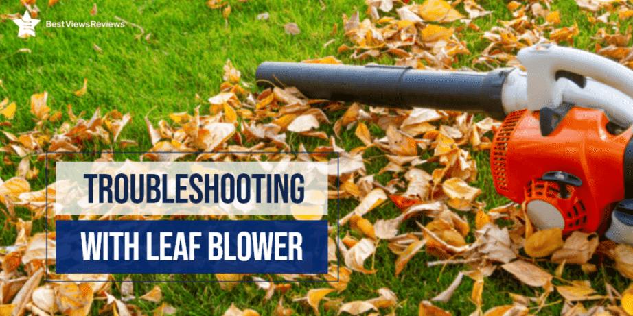 Troubleshooting leaf blower